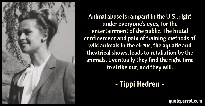 Animal Abuse Is Rampant In The US Right Under Everyo By Tippi Awesome Animal Abuse Quotes