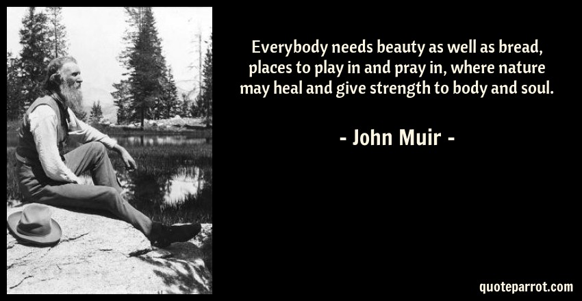 Everybody Needs Beauty As Well As Bread Places To Play By John