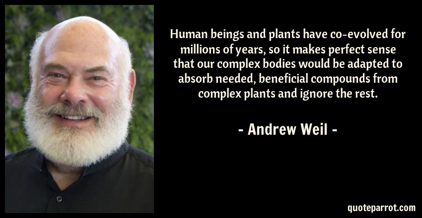 Andrew Weil Quote: Human beings and plants have co-evolved for millions of years, so it makes perfect sense that our complex bodies would be adapted to absorb needed, beneficial compounds from complex plants and ignore the rest.