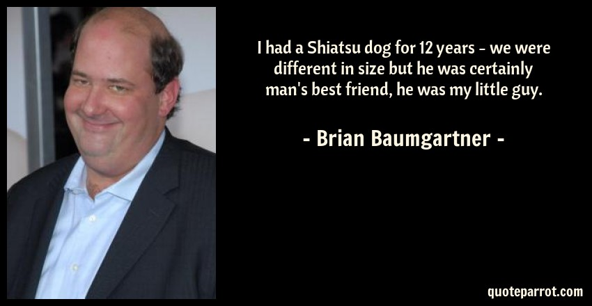Brian Baumgartner Quote: I had a Shiatsu dog for 12 years - we were different in size but he was certainly man's best friend, he was my little guy.