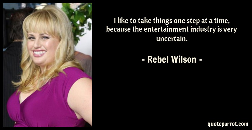 Rebel Wilson Quote: I like to take things one step at a time, because the entertainment industry is very uncertain.