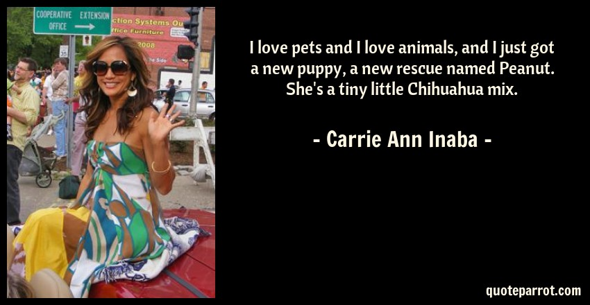 Carrie Ann Inaba Quote: I love pets and I love animals, and I just got a new puppy, a new rescue named Peanut. She's a tiny little Chihuahua mix.