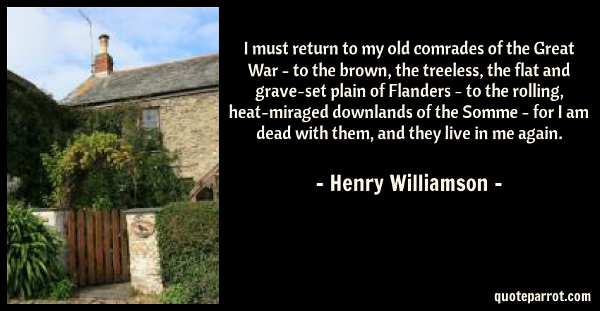 Henry Williamson Quote: I must return to my old comrades of the Great War - to the brown, the treeless, the flat and grave-set plain of Flanders - to the rolling, heat-miraged downlands of the Somme - for I am dead with them, and they live in me again.