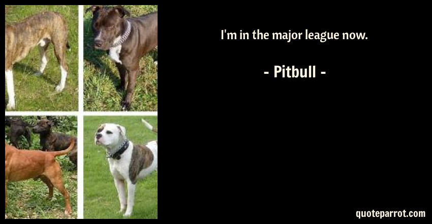 I\'m in the major league now. by Pitbull - QuoteParrot