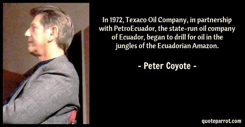 Peter Coyote Quote: In 1972, Texaco Oil Company, in partnership with PetroEcuador, the state-run oil company of Ecuador, began to drill for oil in the jungles of the Ecuadorian Amazon.