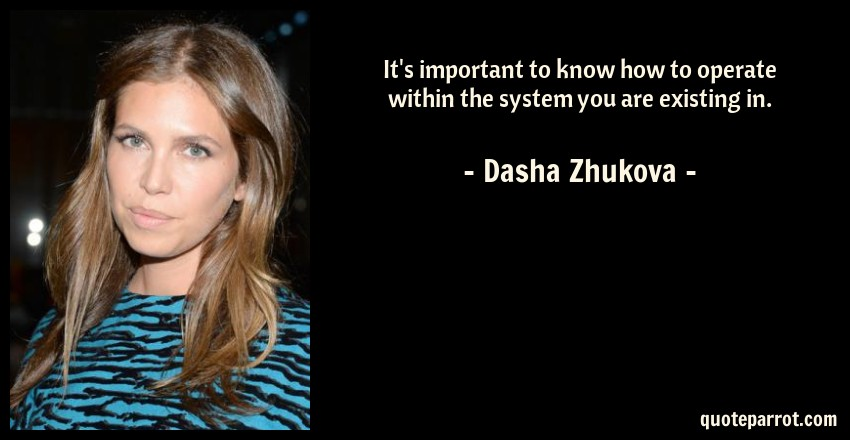 Dasha Zhukova Quote: It's important to know how to operate within the system you are existing in.
