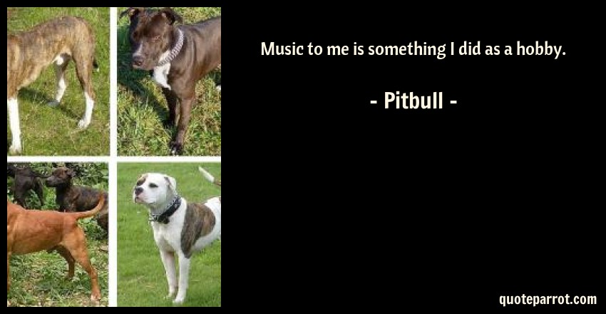 Pitbull Quote: Music to me is something I did as a hobby.