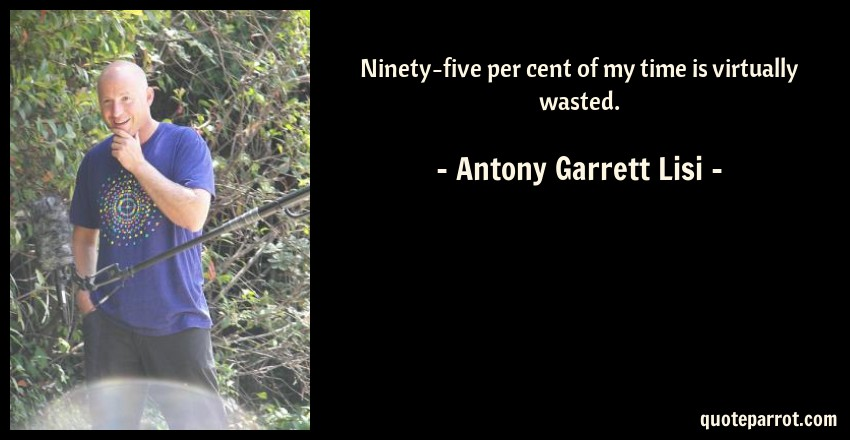 Antony Garrett Lisi Quote: Ninety-five per cent of my time is virtually wasted.