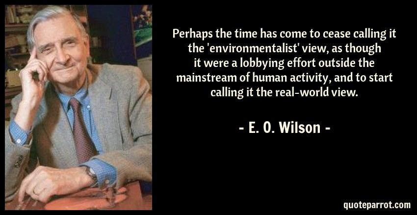 E. O. Wilson Quote: Perhaps the time has come to cease calling it the 'environmentalist' view, as though it were a lobbying effort outside the mainstream of human activity, and to start calling it the real-world view.