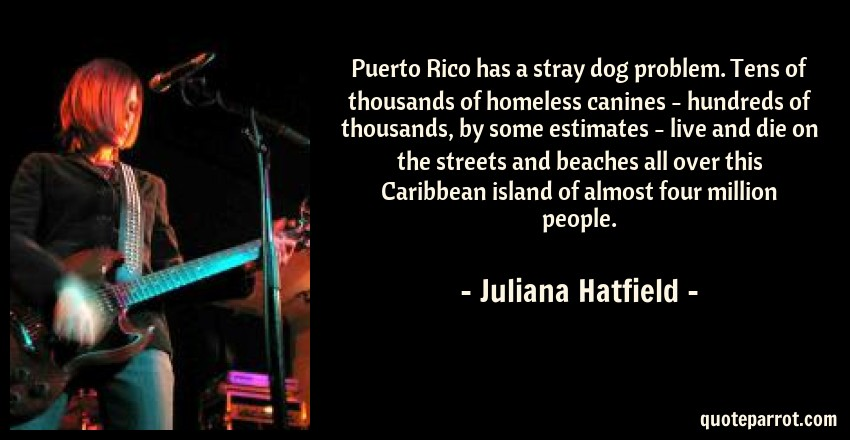 Juliana Hatfield Quote: Puerto Rico has a stray dog problem. Tens of thousands of homeless canines - hundreds of thousands, by some estimates - live and die on the streets and beaches all over this Caribbean island of almost four million people.