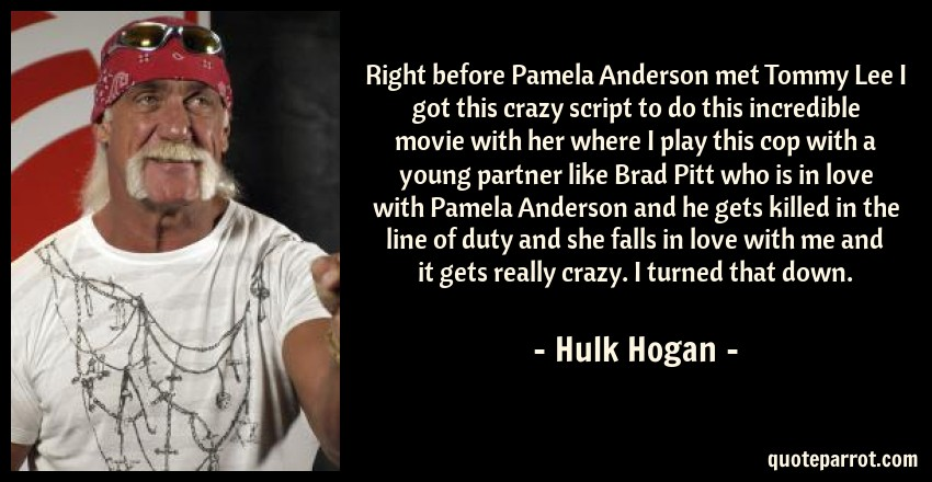 Right before Pamela Anderson met Tommy Lee I got this c    by Hulk