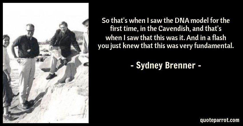 Sydney Brenner Quote: So that's when I saw the DNA model for the first time, in the Cavendish, and that's when I saw that this was it. And in a flash you just knew that this was very fundamental.