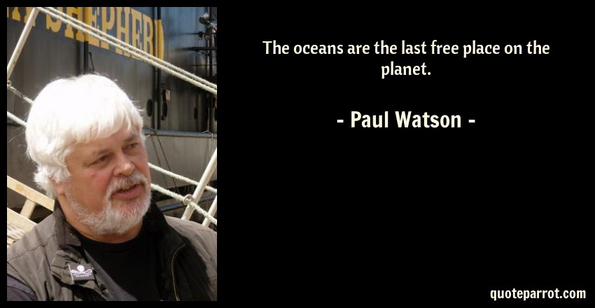 Paul Watson Quote: The oceans are the last free place on the planet.