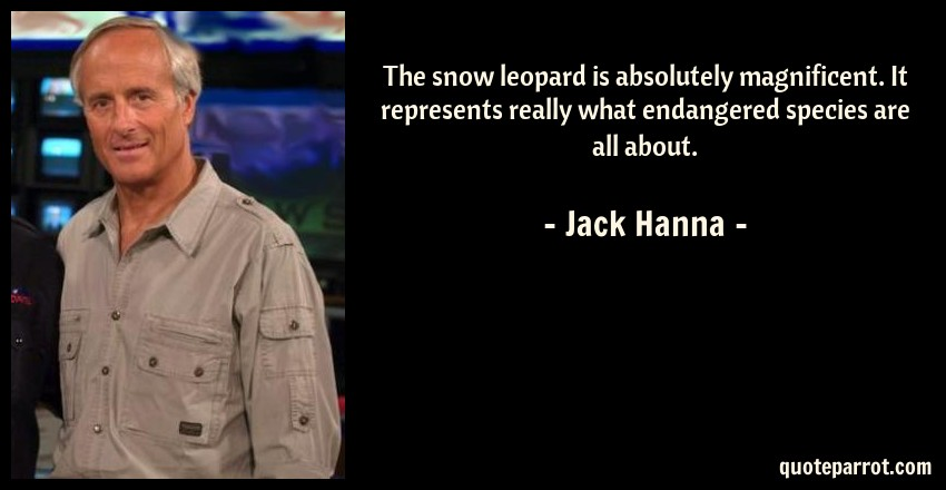 Jack Hanna Quote: The snow leopard is absolutely magnificent. It represents really what endangered species are all about.