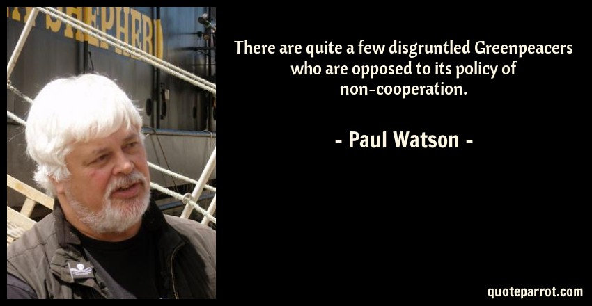 Paul Watson Quote: There are quite a few disgruntled Greenpeacers who are opposed to its policy of non-cooperation.
