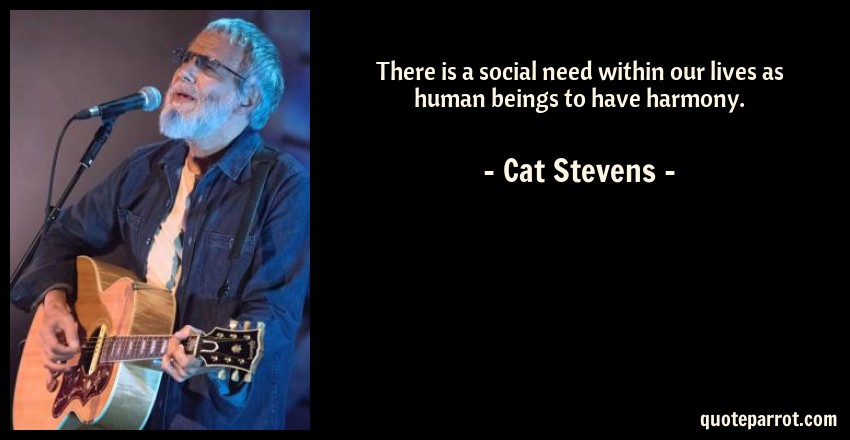 Cat Stevens Quote: There is a social need within our lives as human beings to have harmony.