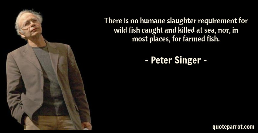 Peter Singer Quote: There is no humane slaughter requirement for wild fish caught and killed at sea, nor, in most places, for farmed fish.