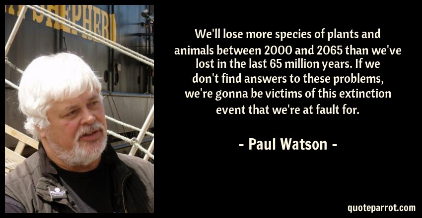 Paul Watson Quote: We'll lose more species of plants and animals between 2000 and 2065 than we've lost in the last 65 million years. If we don't find answers to these problems, we're gonna be victims of this extinction event that we're at fault for.