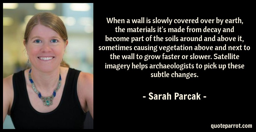 Sarah Parcak Quote: When a wall is slowly covered over by earth, the materials it's made from decay and become part of the soils around and above it, sometimes causing vegetation above and next to the wall to grow faster or slower. Satellite imagery helps archaeologists to pick up these subtle changes.