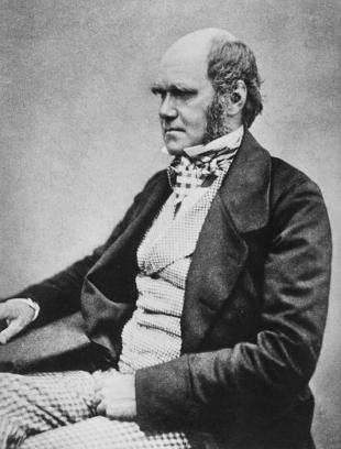Picture of quotation author Charles Darwin