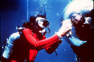 Picture of quotation author Sylvia Earle