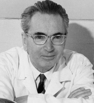 Picture of quotation author Viktor E. Frankl