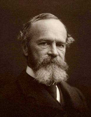 Picture of quotation author William James