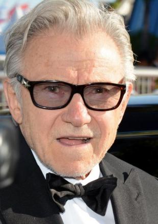 Picture of quotation author Harvey Keitel
