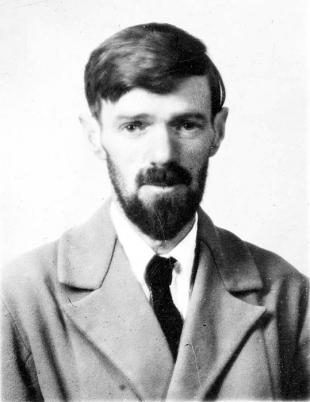 Picture of quotation author D. H. Lawrence