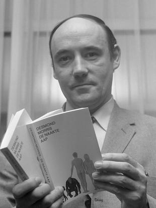 Picture of quotation author Desmond Morris