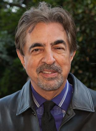 Picture of quotation author Joe Mantegna
