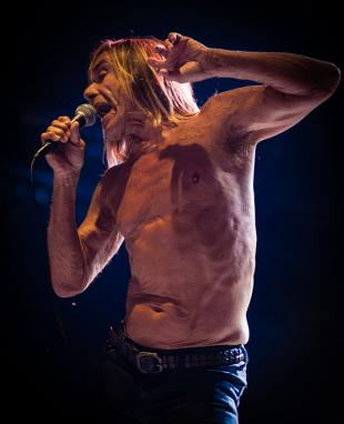 Picture of quotation author Iggy Pop