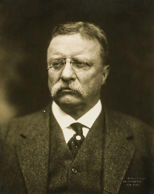 Picture of quotation author Theodore Roosevelt