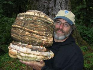 Picture of quotation author Paul Stamets
