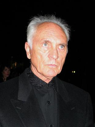 Picture of quotation author Terence Stamp