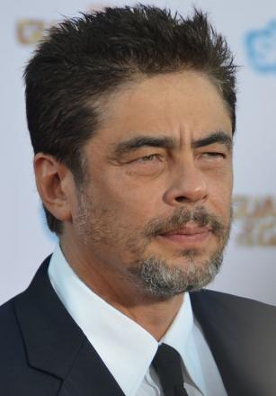 Picture of quotation author Benicio Del Toro
