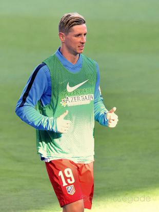 Picture of quotation author Fernando Torres