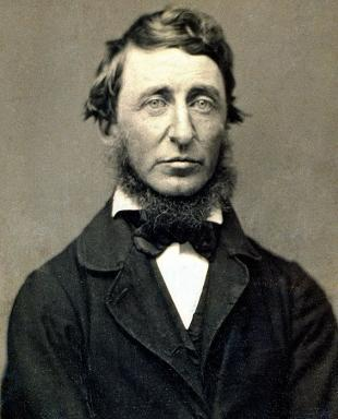 Picture of quotation author Henry David Thoreau