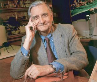 Picture of quotation author E. O. Wilson