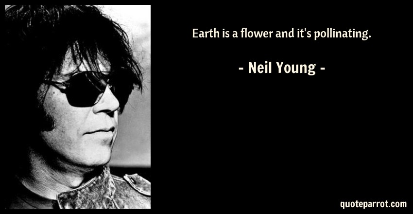 Neil Young Quote: Earth is a flower and it's pollinating.