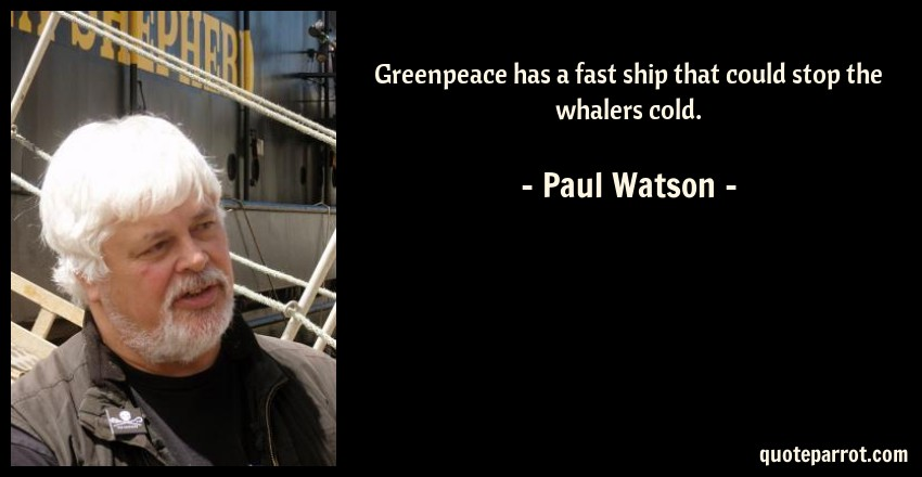 Paul Watson Quote: Greenpeace has a fast ship that could stop the whalers cold.