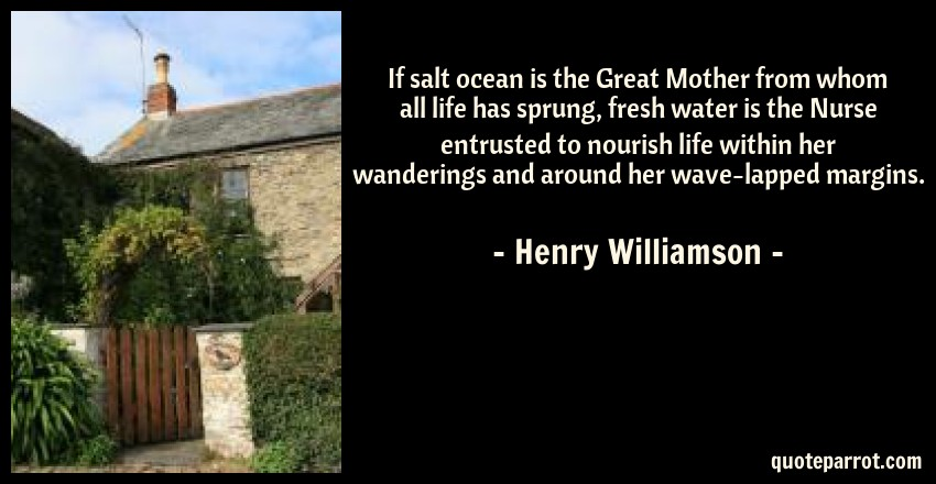 Henry Williamson Quote: If salt ocean is the Great Mother from whom all life has sprung, fresh water is the Nurse entrusted to nourish life within her wanderings and around her wave-lapped margins.