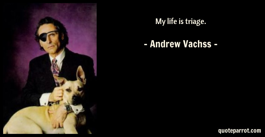 Andrew Vachss Quote: My life is triage.