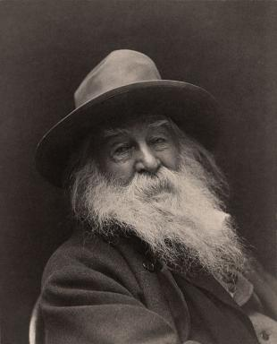 Picture of quotation author Walt Whitman